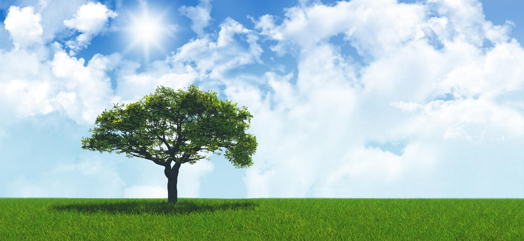 Suntechenergy Zonnepaneel Duurzaamheid